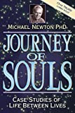 Journey of Souls book cover.
