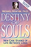 Destiny of Souls book cover.