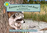 Raccoon at Clear Creek
