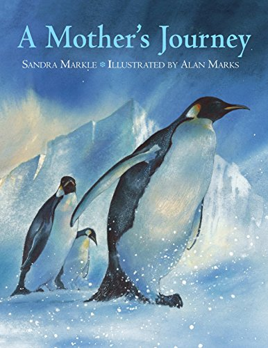 [A Mother's Journey]