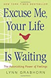 Buy Excuse Me, Your Life Is Waiting: The Astonishing Power of Feelings from Amazon