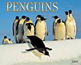 Penguins Calendar: 2005