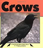 Crows (Nature Watch)