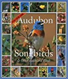 Audubon Songbirds and Other Backyard Birds Calendar: 2005