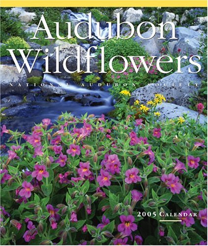Audubon Wildflowers Wall Calendar 2005 (Audubon Calendars 2005)