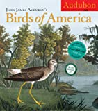 Buy John James Audubon's Birds of America 2012 Wall Calendar