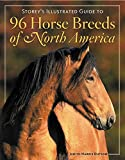 96 Horse Breeds