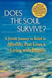 Does the Soul Survive book cover.