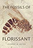 The Fossils of Florissant