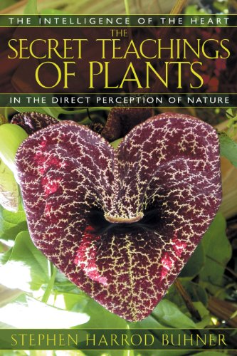 The Secret Teachings of Plants: The Intelligence of the Heart in the Direct Perception of Nature, Buhner, Stephen Harrod