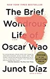 View at Amazon: The Brief Wondrous Life of Oscar Wao