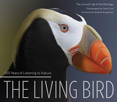 The Living Bird: 100 Years of Listening to Nature - Gerrit Vyn, Cornell Lab Of Ornithology