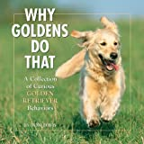 Why Goldens Do That: A Collection Of Curious Golden Retriever Behaviors   Click!