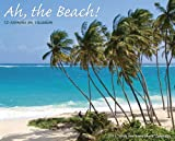 Buy Ah! the Beach 2011 Wall Calendar