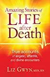 Amazing Stories of Life After Death book cover.