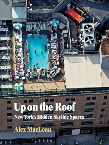 Up on the Roof: New York's Hidden Skyline Spaces - Alex MacLean