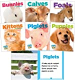 Baby Animals Set 1 (Set)