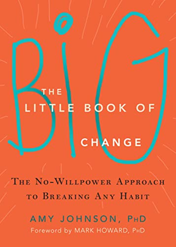 93. The Little Book of Big Change: The No-Willpower Approach to Breaking Any Habit – Amy Johnson; Amy Johnson