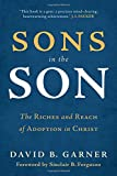 Sons in the Son: The Riches and Reach of Adoption in Christ book cover