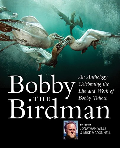 birdman movie download in english