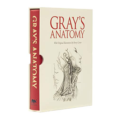 Pdf Grays Anatomy Free Ebooks Download Ebookee