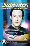 The Next Generation:  Maelstrom (Star Trek)