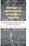 Multiscale and multiresolution approaches in turbulence