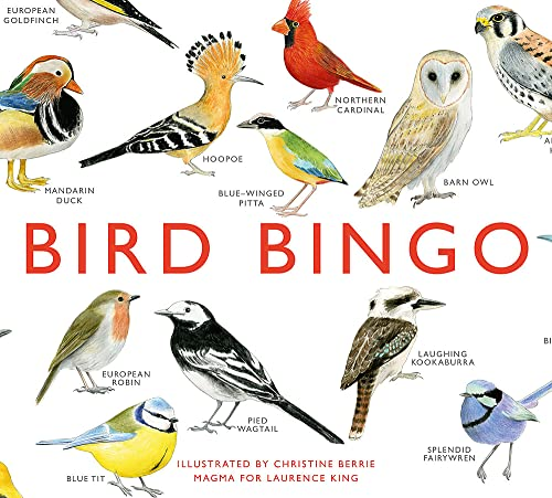 Bird Bingo - Christine Berrie
