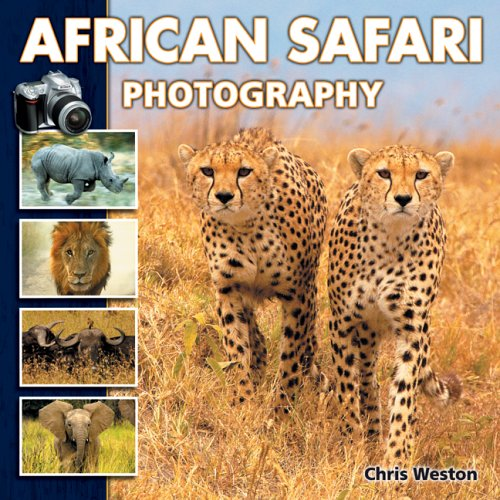 African Safari Photography