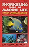 Snorkeling Guide to Marine Life: Florida Caribbean Bahamas, written by Paul Humann / Ned Deloach