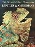 : The World's Most Spectacular Reptiles & Amphibians