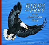 Birds of Prey in the American West
