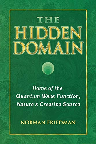 The Hidden Domain: Home of the Quantum Wave Function, Nature's Creative Source, Friedman, Norman
