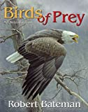 Birds of Prey: An Introduction