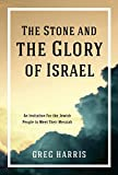 Image for The Stone and the Glory of Israel: An Invitation for the Jewish People to Meet Their Messiah