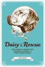 Daisy to the Rescue by Jeff Campbell
