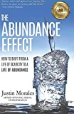 The Abundance Effect: How to Shift from a Life of Scarcity to a Life of Abundance
