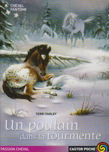 Cheval fantôme, Tome 5