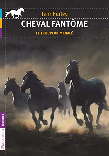 Cheval fantôme, Tome 6