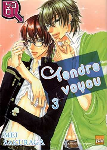 Tendre voyou T03