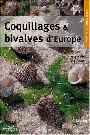 Coquillages et bivalves d'Europe
