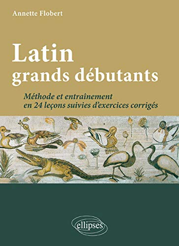 Latin grands débutants