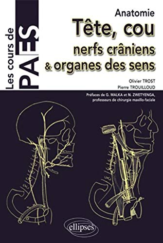 Anatomie tête & cou