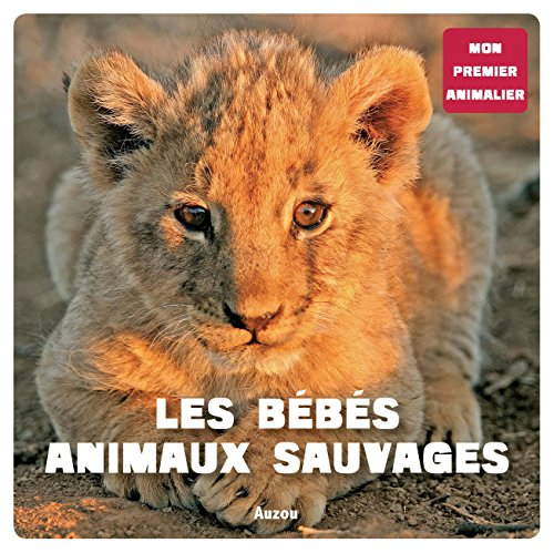Les b b s animaux sauvages details - Bebe animaux sauvage ...