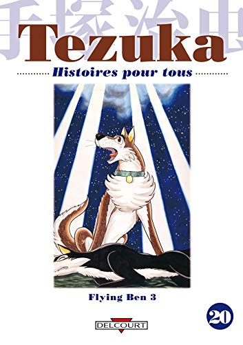 Histoires pour tous, Tome 20 : Flying Ben : Tome 3