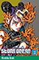 Stone Ocean, Tome 9 : Brûle, dragon's dream