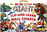Giant Flip-and-Learn Wall Chart
