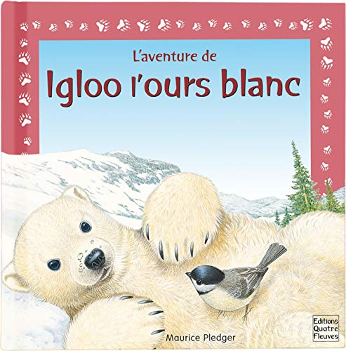 Igloo l'ours blanc