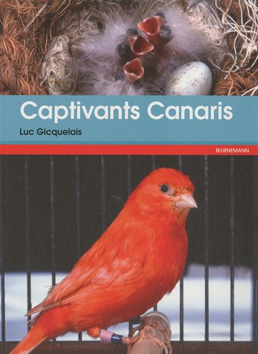 Captivants canaris : Canaris de couleurs, de chants, de postures et frisés