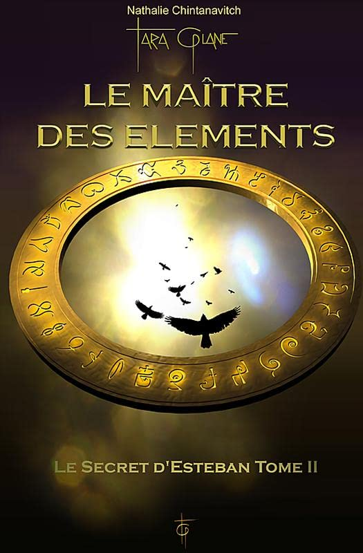 Le maitre des elements tome 2 le secret d'esteban